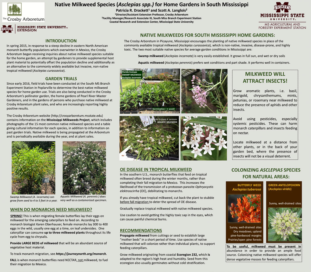 Native Milkweed Species (Asclepias spp.) for Home Gardens in South Mississippi document